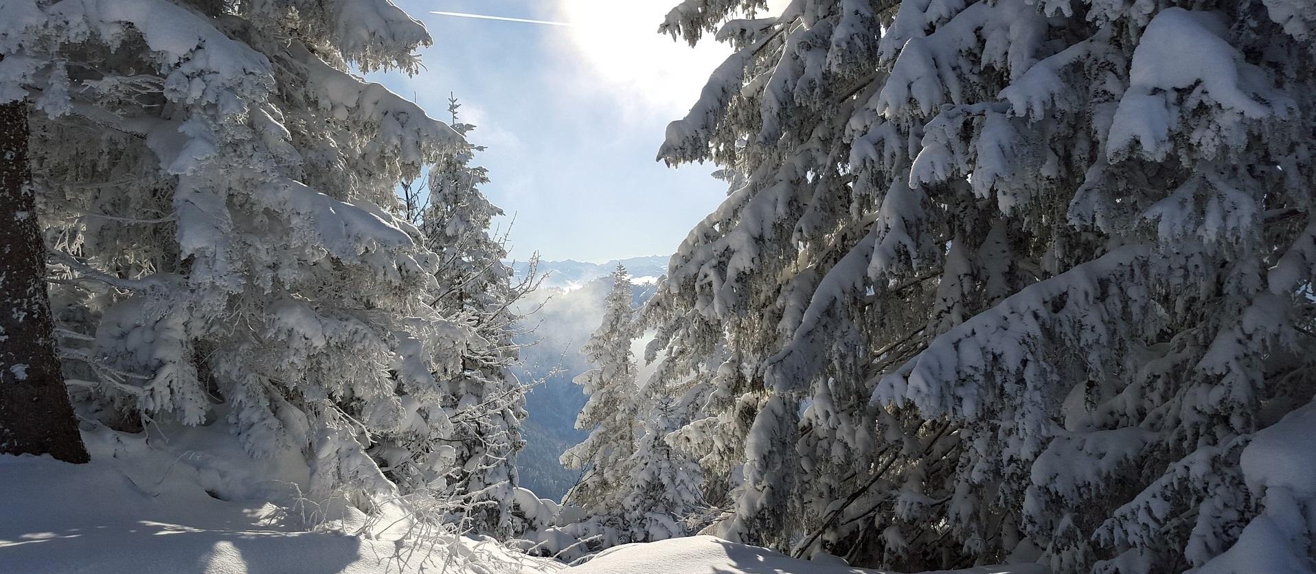 ski-1156460_1920_2.jpg